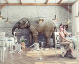 elephant  in  restaurant - Fine Art prints
