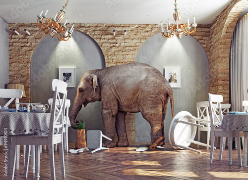 an elephant calm in the  restaurant - 94910614