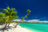 Fototapety Beach with palm trees over the lagoon on Fiji Islands
