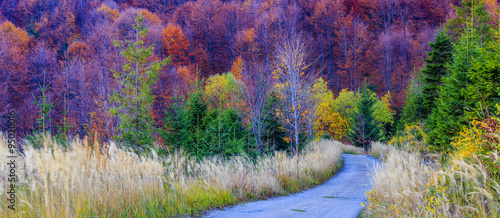 Staande foto Snoeien Autumn in the Beskidy Mountains