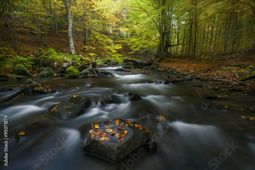 Tuinposter Bos rivier Autumn landscape on a mountain river