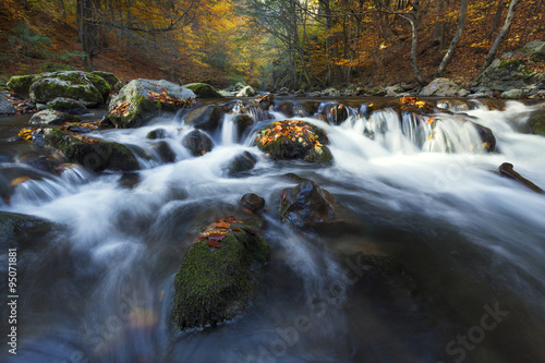 Deurstickers Bos rivier Autumn landscape on a mountain river