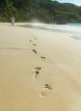 Fototapety Fussspuren im Sand am Strand