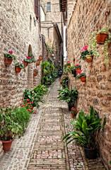 Fototapeta wąska uliczka we Włoszech