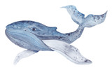 Fototapety Watercolor Whale Painting