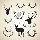 rustic antlers set  - 95157464
