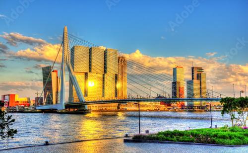 Fotobehang Rotterdam Erasmus Bridge in Rotterdam - Netherlands