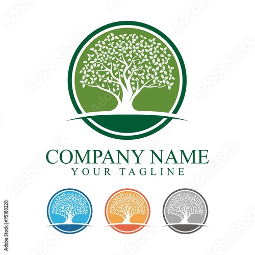 Zdjęcia na płótnie, fototapety, obrazy : Oak Tree With Circle Logo Design