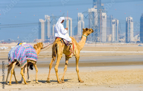 Poster Dubai, camel racing in training in the outskirts of the city