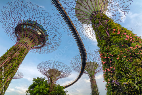 Supertrees at Gardens by the Bay -Singapore Poster
