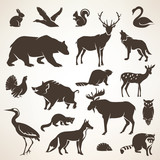 Fototapety european forrest wild animals collection of stylized vector silh