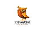 Funny Owl Logo design vector. Wizdom Education Friendly icon