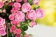 Obrazy na płótnie, fototapety, zdjęcia, fotoobrazy drukowane : Flower.