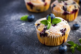 Fototapety Blueberry muffins with powdered sugar and fresh berry