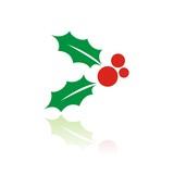 Fototapety Icono acebo de Navidad color FB reflejo