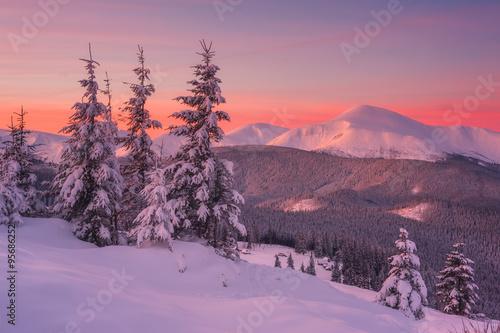 Aluminium Winter landscape
