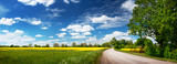 Fototapety Asphalt road near a field