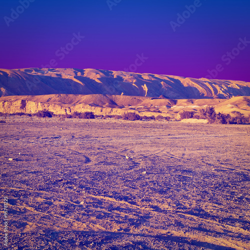 Foto op Canvas Violet Desert