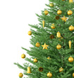 Obrazy na płótnie, fototapety, zdjęcia, fotoobrazy drukowane : Christmas tree isolated 3d rendering