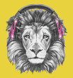 Portrait of Lion with headphones. Hand drawn illustration.