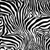 Zebra Stripes . Background. Pattern. A seamless pattern.