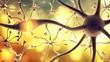 Постер, плакат: Nerve Cell
