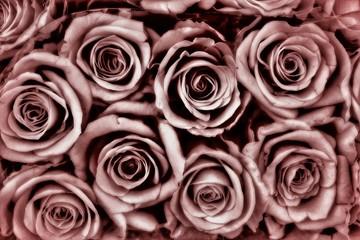 brauner Rosenhintergrund - Beileidskarte