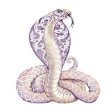 Tattoo snake cobra with open cowled - 95985228