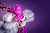 Orchidea con pietre bianche su specchio