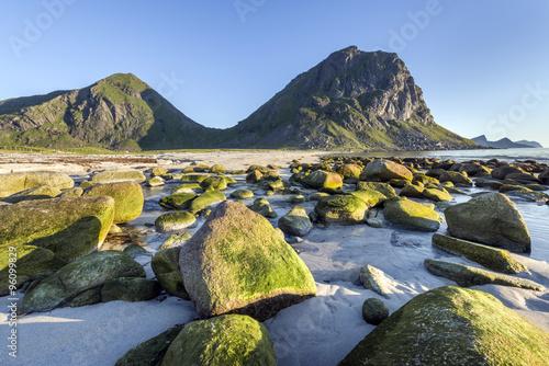 Poster Green stones on the Lofoten Island coastline, Norway