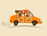 Auburn man in an orange car and the dog go ahead
