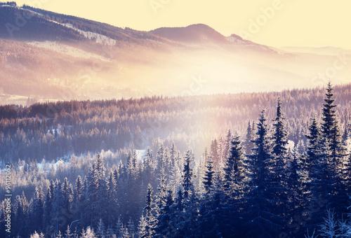 Foto op Plexiglas Beige Winter mountains