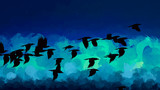 Flying birds brush strokes background