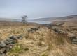 misty yorkshire moorland landscape