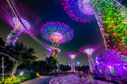 Magic garden at night, Singapore Poster