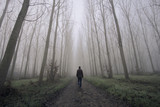 Fototapety Man walking on a dirty road between fog and trees