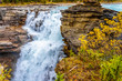 Athabasca Fall in Jasper National Park in the Canadian Rockies