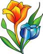 Obrazy na płótnie, fototapety, zdjęcia, fotoobrazy drukowane : Colored Rose - Orange & Blue Shades