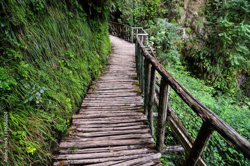 Tuinposter Weg in bos Pathway Wooden Footbridge