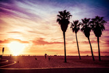 Fototapety Palm trees at Venice Beach, Los Angeles, California. Sunset scene. Vintage post processed. Fashion, travel, summer, vacation and tropical beach concept.