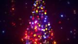 Fototapety blurred christmas tree lights