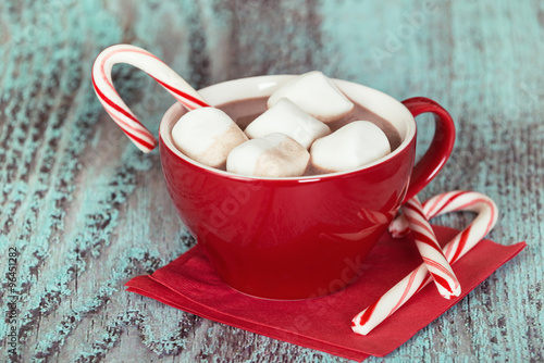 Tuinposter Chocolade Hot Chocolate with marshmallows and candy cane in a red cup