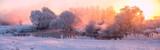 Winter sunrise - 96543088
