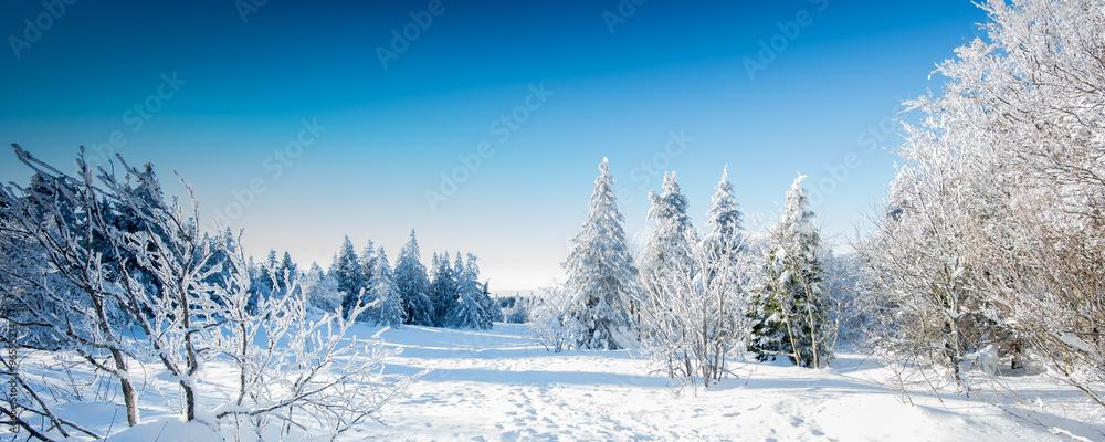 muurstickers paysage d 39 hiver foto4art. Black Bedroom Furniture Sets. Home Design Ideas