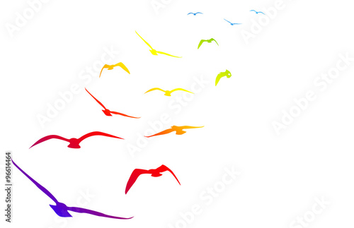 Naklejka gabbiani, volare, volo, arcobaleno, pace