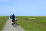 Fahrradfahrer an der Nordsee