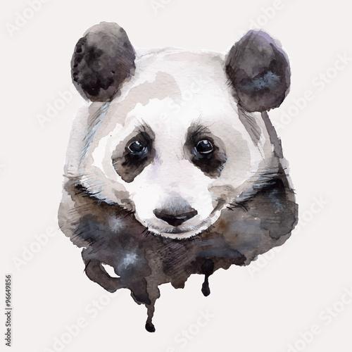 Panda.Watercolor illustration Vector - 96649856