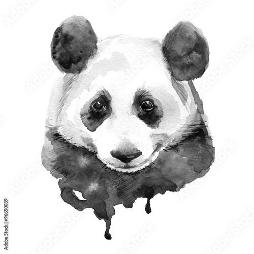 Fototapeta Panda.Black and white. Isolated
