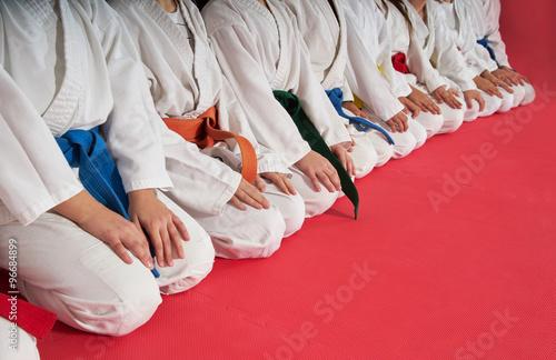 sport karate kids Poster
