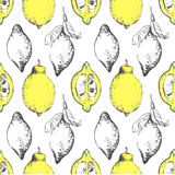 Hand-drawn sketch of lemon. Citrous pattern.